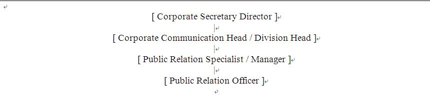 struktur organisasi PR manager
